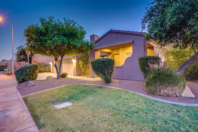 3600 S Camellia Place, Chandler, AZ 85248 (MLS #5991090) :: Lifestyle Partners Team