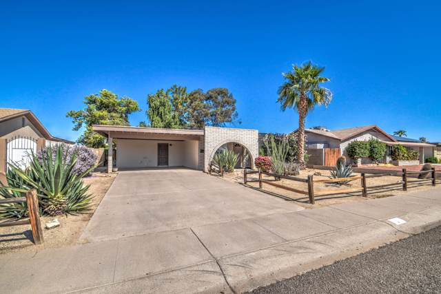 2238 W Windrose Drive, Phoenix, AZ 85029 (MLS #5991115) :: Devor Real Estate Associates