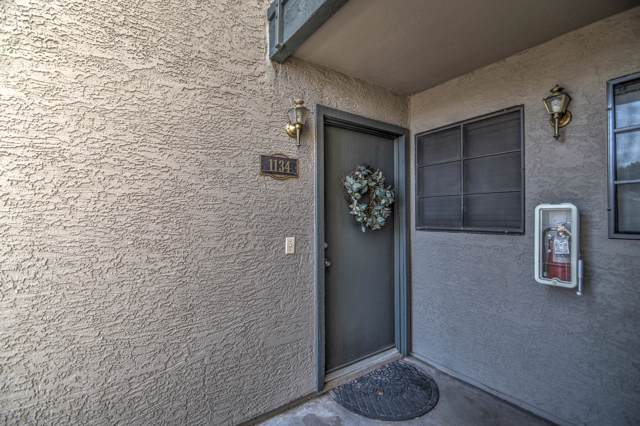 533 W Guadalupe Road #1134, Mesa, AZ 85210 (MLS #5991141) :: CC & Co. Real Estate Team