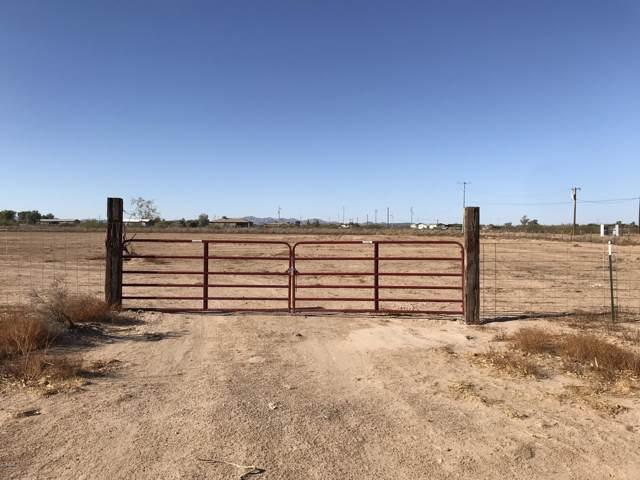37538 W Elwood Street, Tonopah, AZ 85354 (MLS #5991245) :: The Property Partners at eXp Realty