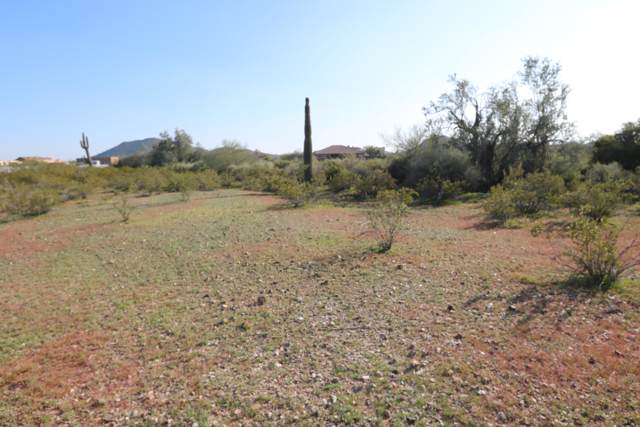 153XX W Bob White Way, Surprise, AZ 85387 (MLS #5991248) :: Revelation Real Estate