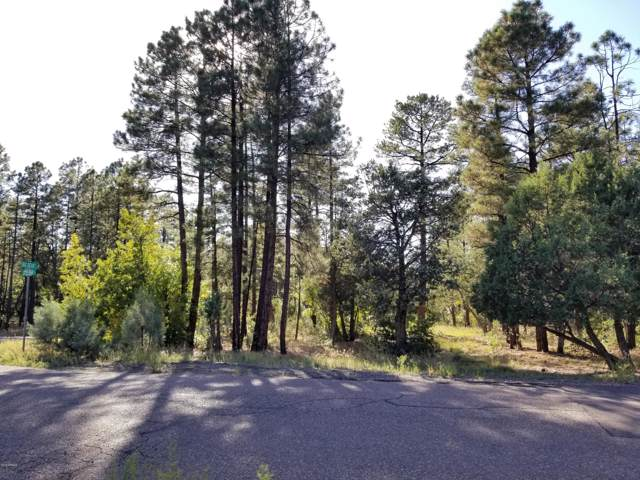 868 Little Bear Loop, Lakeside, AZ 85929 (MLS #5991297) :: Midland Real Estate Alliance