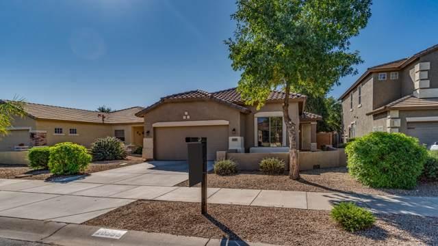20955 E Via Del Palo Street, Queen Creek, AZ 85142 (MLS #5991316) :: The Helping Hands Team