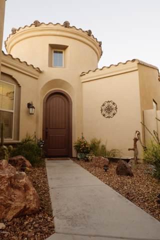 2241 N Park Meadows Drive, Buckeye, AZ 85396 (MLS #5991320) :: Brett Tanner Home Selling Team