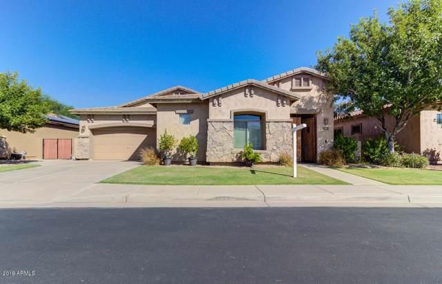 3096 E Scorpio Place, Chandler, AZ 85249 (MLS #5991321) :: CC & Co. Real Estate Team