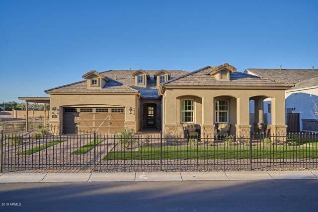 1144 N Portland Street, Mesa, AZ 85205 (MLS #5991402) :: My Home Group