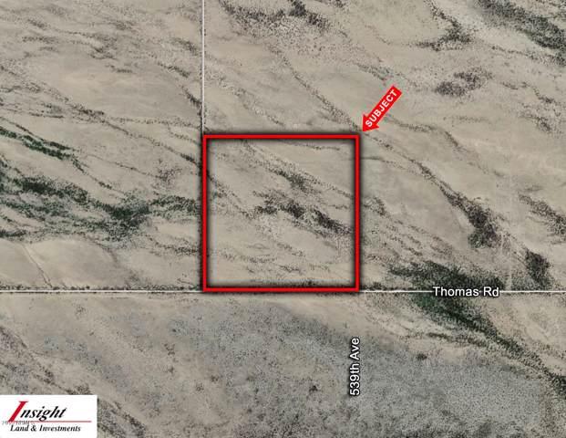 53900 W Thomas Road, Harquahala, AZ 85343 (MLS #5991448) :: Dave Fernandez Team | HomeSmart