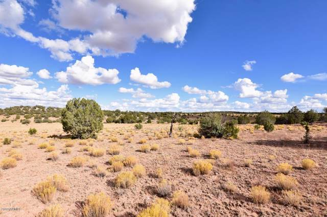 117 Acres W Hard Rock Way, Seligman, AZ 86337 (MLS #5991468) :: The W Group