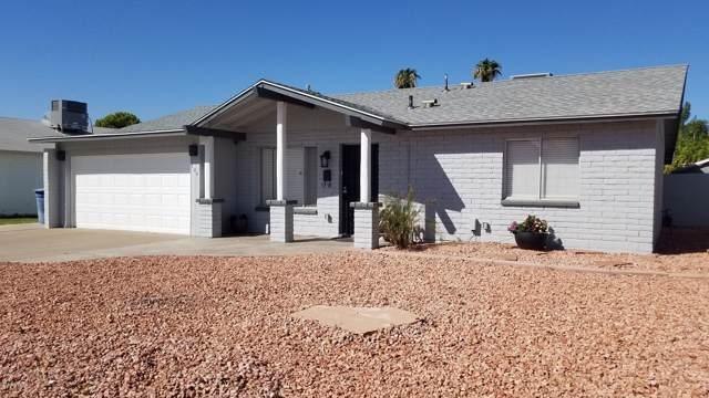 704 E Fordham Drive, Tempe, AZ 85283 (MLS #5991500) :: Occasio Realty