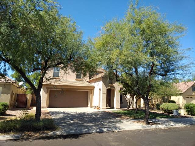 3962 E Ironhorse Road, Gilbert, AZ 85297 (MLS #5991527) :: Relevate | Phoenix
