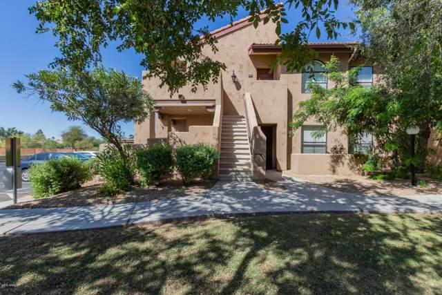 1351 N Pleasant Drive #1050, Chandler, AZ 85225 (MLS #5991539) :: Occasio Realty