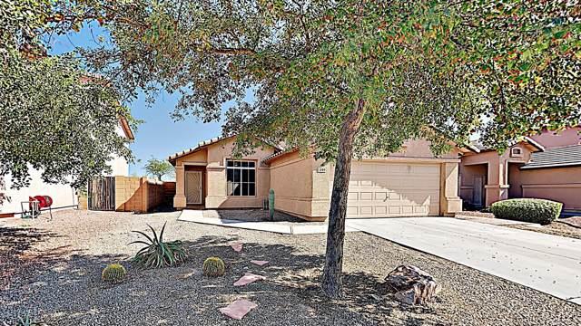 1409 S 219TH Drive, Buckeye, AZ 85326 (MLS #5991893) :: Conway Real Estate