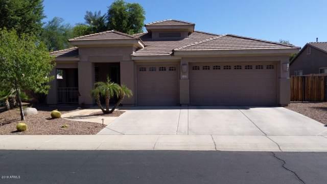 3767 S Newport Street, Chandler, AZ 85286 (MLS #5991928) :: Keller Williams Realty Phoenix