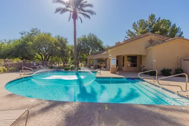 1966 W Olive Way, Chandler, AZ 85248 (MLS #5992028) :: CC & Co. Real Estate Team