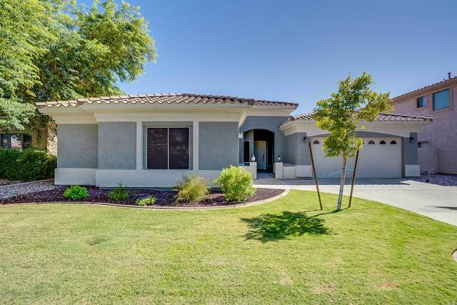 16331 N 170TH Lane, Surprise, AZ 85388 (MLS #5992039) :: Openshaw Real Estate Group in partnership with The Jesse Herfel Real Estate Group