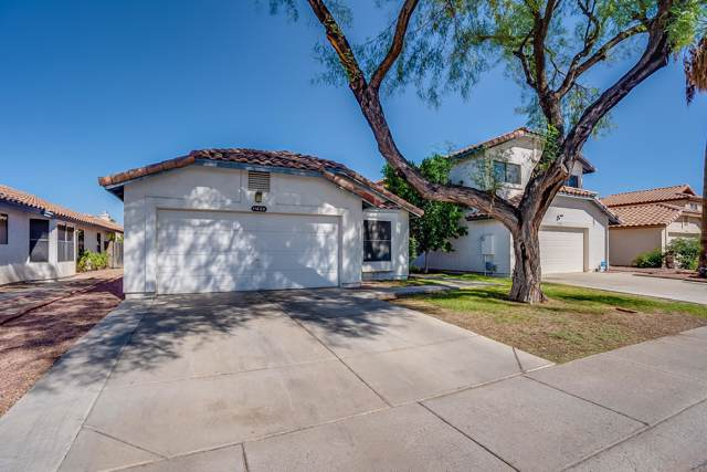 11622 W Olive Drive, Avondale, AZ 85392 (MLS #5992040) :: The Garcia Group