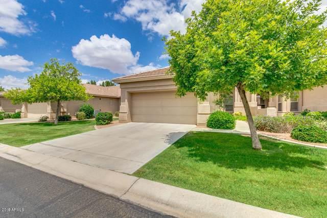 9608 E Champagne Drive, Sun Lakes, AZ 85248 (MLS #5992168) :: Revelation Real Estate