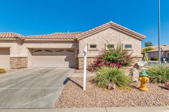 1588 E Earl Drive, Casa Grande, AZ 85122 (MLS #5992236) :: Nate Martinez Team
