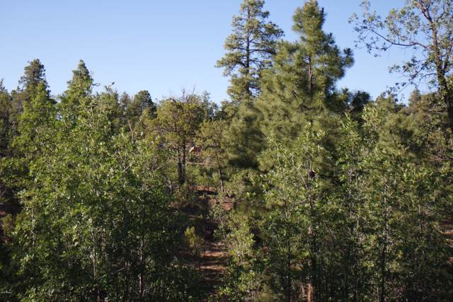 5963 Rim Road, Lakeside, AZ 85929 (MLS #5992312) :: The Property Partners at eXp Realty