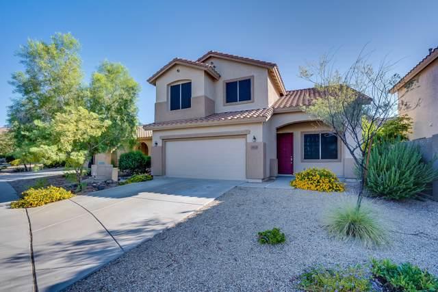 38103 N Pagoda Lane, Phoenix, AZ 85086 (MLS #5992318) :: Revelation Real Estate