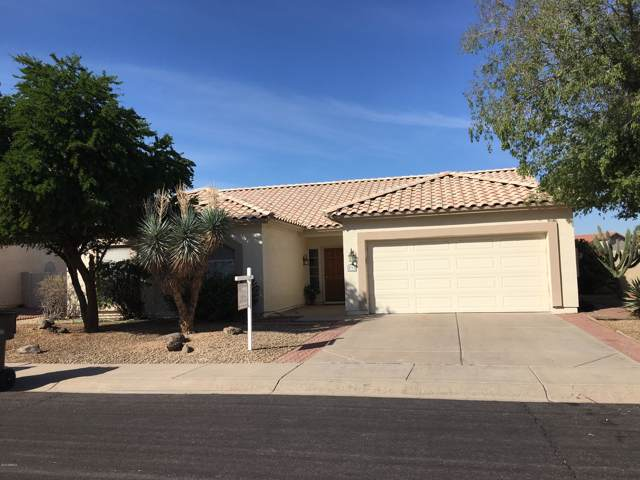 598 S Neely Street, Gilbert, AZ 85233 (MLS #5992415) :: Team Wilson Real Estate