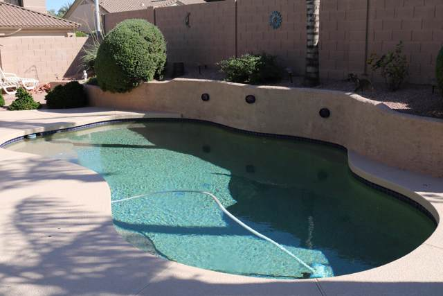 897 W Ebony Drive, Chandler, AZ 85248 (MLS #5992444) :: Cindy & Co at My Home Group