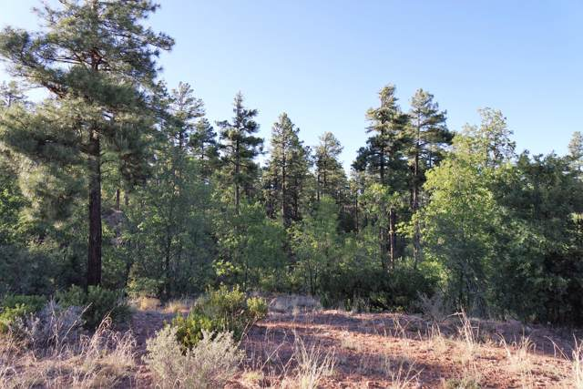 5977 Rim Road, Lakeside, AZ 85929 (MLS #5992453) :: The Property Partners at eXp Realty