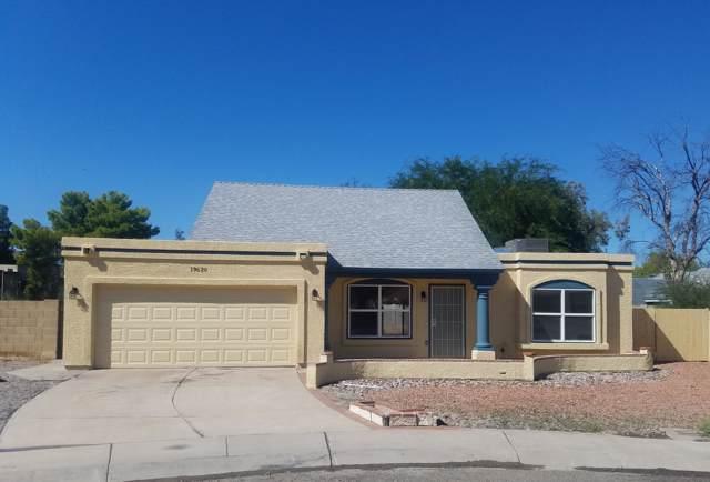 19620 N 9 Street, Phoenix, AZ 85024 (MLS #5992590) :: The Carin Nguyen Team