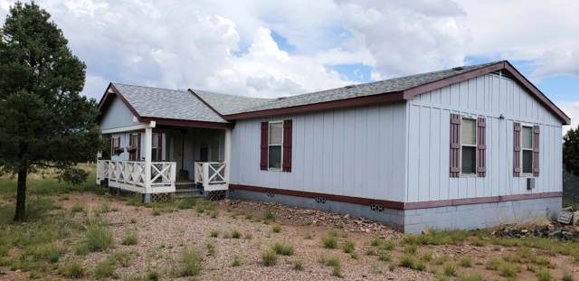 73 S Cabin Lane, Young, AZ 85554 (MLS #5992609) :: Lucido Agency