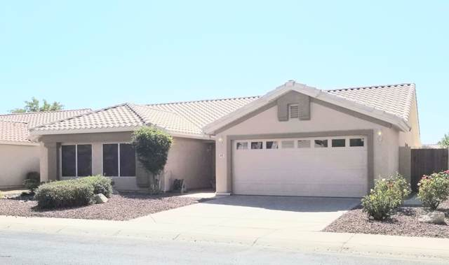 6377 W Potter Drive, Glendale, AZ 85308 (MLS #5992628) :: RE/MAX Excalibur