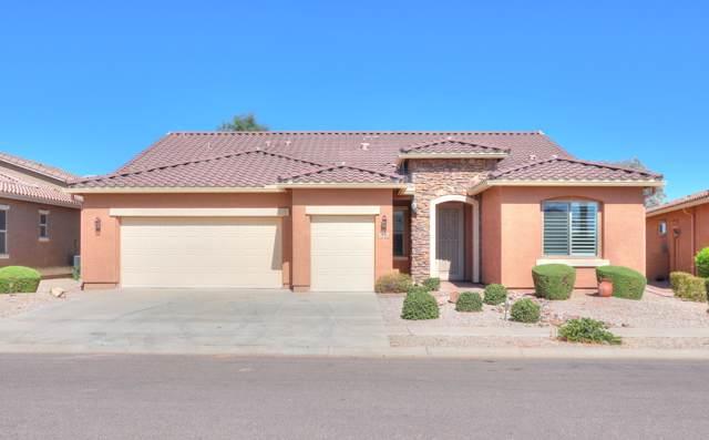 2634 E San Mateo Drive, Casa Grande, AZ 85194 (MLS #5992630) :: Occasio Realty