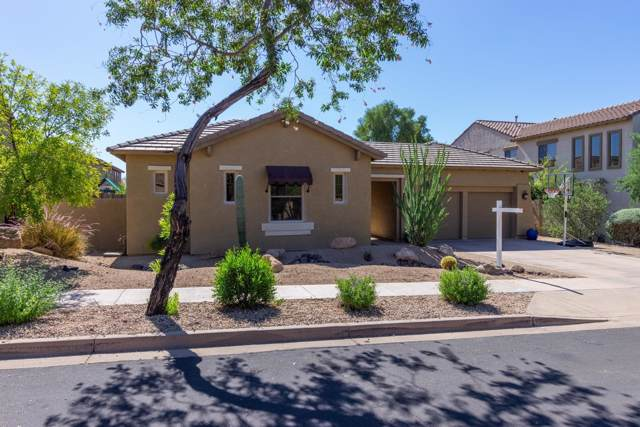 2623 W Trapanotto Road, Phoenix, AZ 85086 (MLS #5992677) :: Conway Real Estate