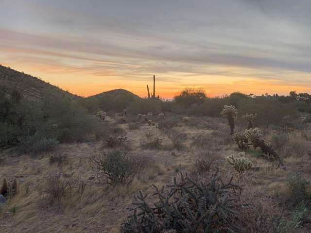 1043X E Pinnacle Peak Road, Scottsdale, AZ 85255 (MLS #5992716) :: The Pete Dijkstra Team