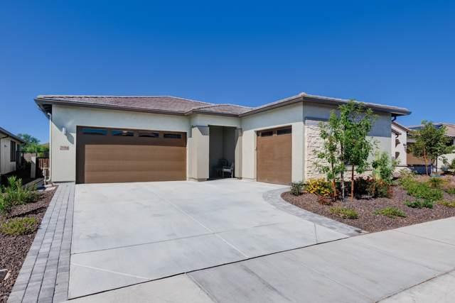 29384 N 132ND Lane, Peoria, AZ 85383 (MLS #5992768) :: Howe Realty