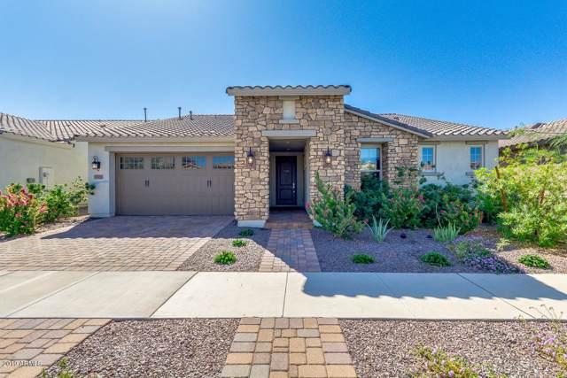 10553 E Relativity Avenue, Mesa, AZ 85212 (MLS #5992796) :: Lucido Agency