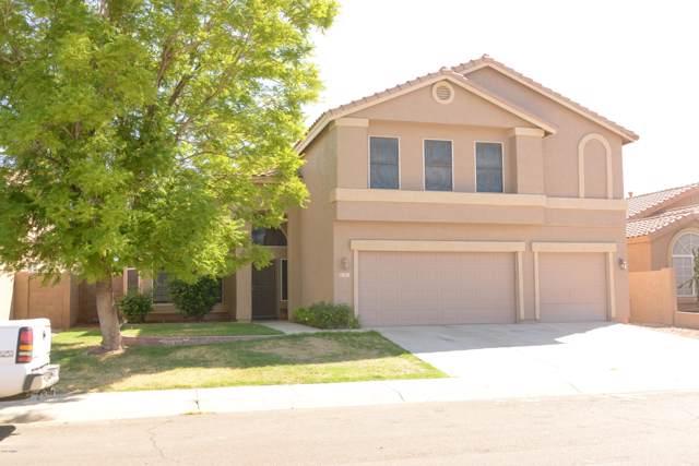 913 S Gardner Drive, Chandler, AZ 85224 (MLS #5992876) :: The Pete Dijkstra Team