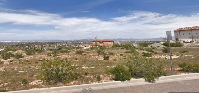 10802 S 25TH Drive, Phoenix, AZ 85041 (MLS #5992962) :: RE/MAX Excalibur