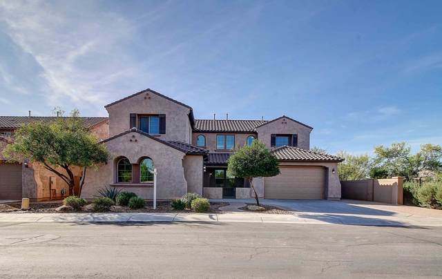 11145 E Renfield Avenue, Mesa, AZ 85212 (MLS #5992965) :: The Property Partners at eXp Realty