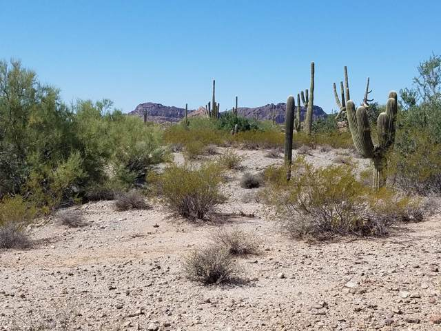 0 W Adobe Dam Road, Queen Creek, AZ 85142 (MLS #5993052) :: Revelation Real Estate