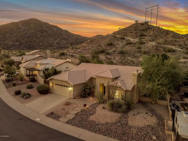 4024 E Western Star Boulevard, Phoenix, AZ 85044 (MLS #5993154) :: Power Realty Group Model Home Center