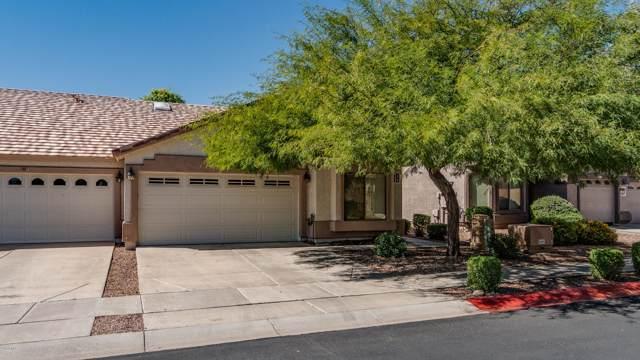 2250 E Deer Valley Road #105, Phoenix, AZ 85024 (MLS #5993174) :: The Laughton Team