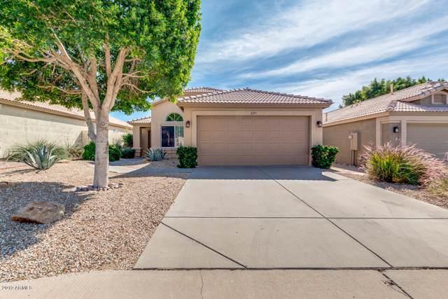 6717 E Norwood Street, Mesa, AZ 85215 (MLS #5993197) :: My Home Group