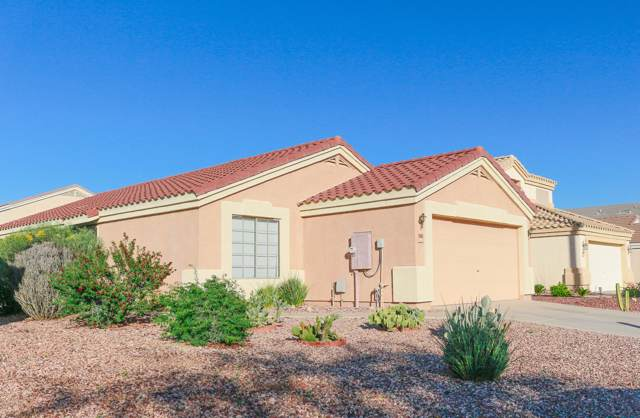 23880 W Antelope Trail, Buckeye, AZ 85326 (MLS #5993232) :: Brett Tanner Home Selling Team