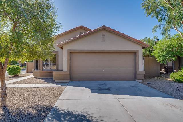 12551 W Indianola Avenue, Avondale, AZ 85392 (MLS #5993281) :: Nate Martinez Team