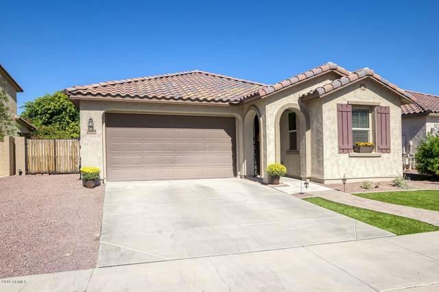 13140 W Briles Road, Peoria, AZ 85383 (MLS #5993331) :: The Pete Dijkstra Team
