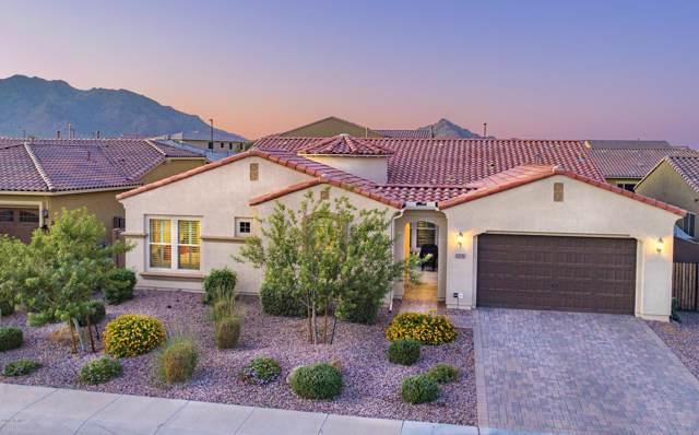 2237 E Saddlebrook Road, Gilbert, AZ 85298 (MLS #5993388) :: Keller Williams Realty Phoenix