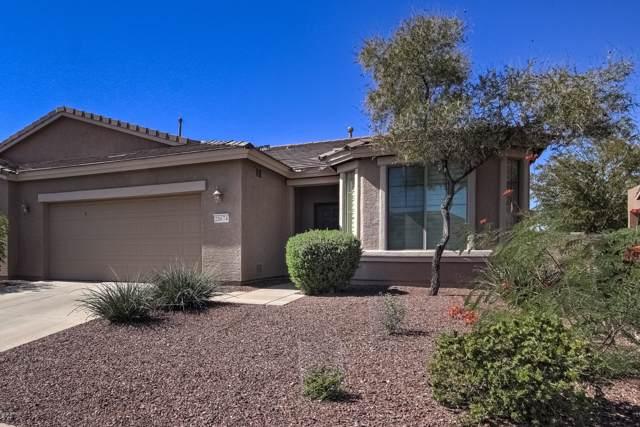 20674 N Licorice Lane, Maricopa, AZ 85138 (MLS #5993402) :: Revelation Real Estate