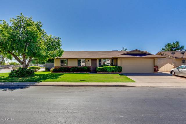 3163 E Dolphin Avenue, Mesa, AZ 85204 (MLS #5993424) :: Yost Realty Group at RE/MAX Casa Grande
