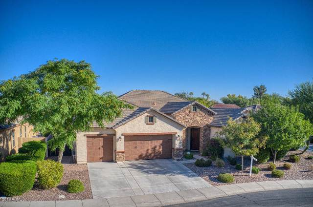 2412 W Remington Place, Chandler, AZ 85286 (MLS #5993548) :: The Pete Dijkstra Team