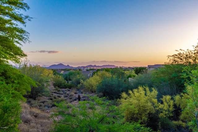 13227 E Poinsettia Drive, Scottsdale, AZ 85259 (MLS #5993549) :: The Pete Dijkstra Team